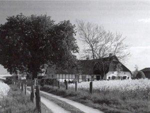 Das Foto zeigt eine alte Ansicht von Dallacker 2.